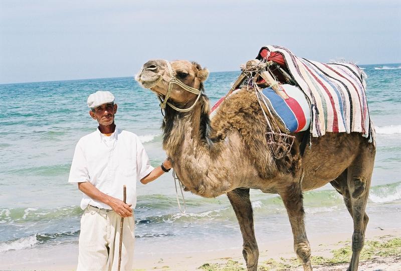 Succombez au charme de la tunisie